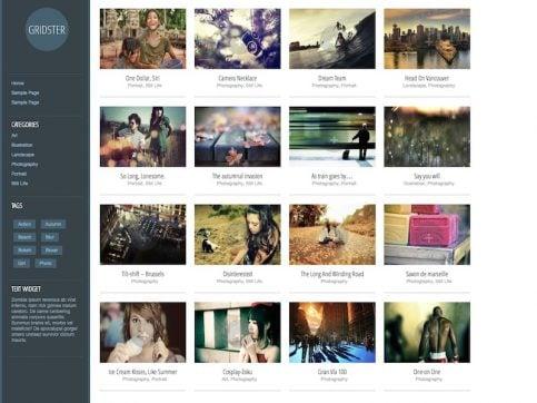 Gridster Portfolio WordPress Theme
