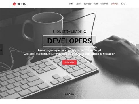 Olida Parallax One-Page WordPress Theme