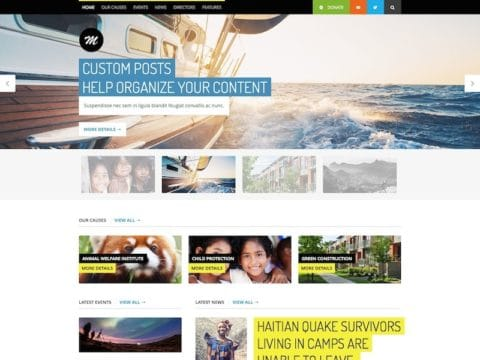 Mission WP Theme
