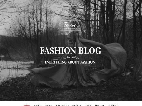 Teresa Fashion WordPress Theme