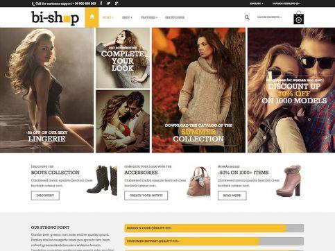 Bi-Shop Business WordPress Theme