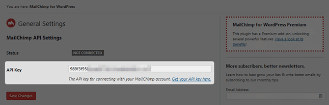 MailChimp for WordPress API Key