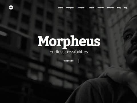 Morpheus WordPress Theme