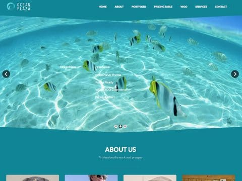 OceanPlaza WordPress Theme