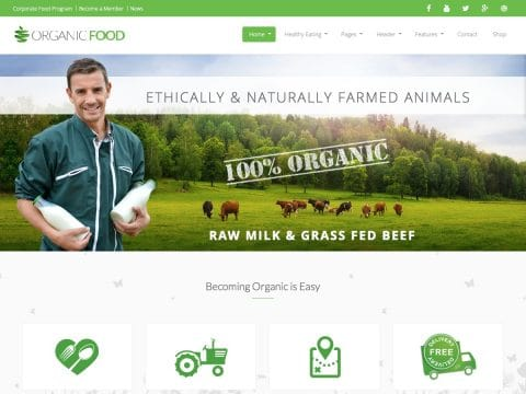 OrganicFood WordPress Theme