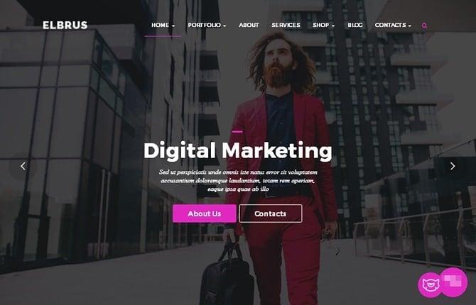 Elbrus WordPress Theme