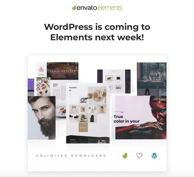Envato Elements includes WordPress products