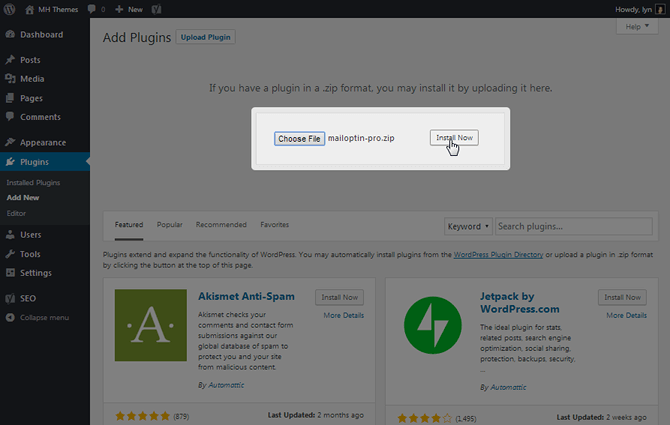 Install MailOptin Pro